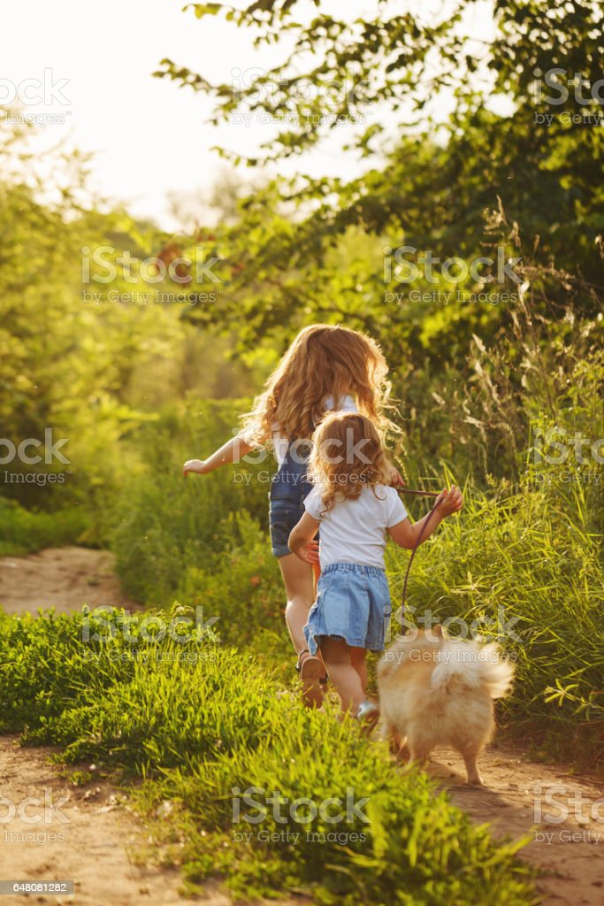 Little sisters walk with the dog stock photo
