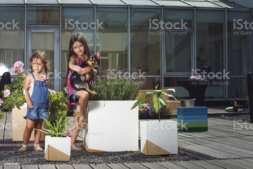 Little sisters with doggy royalty-free stock photo