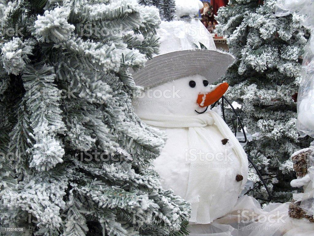 Little snowman royalty-free stock photo