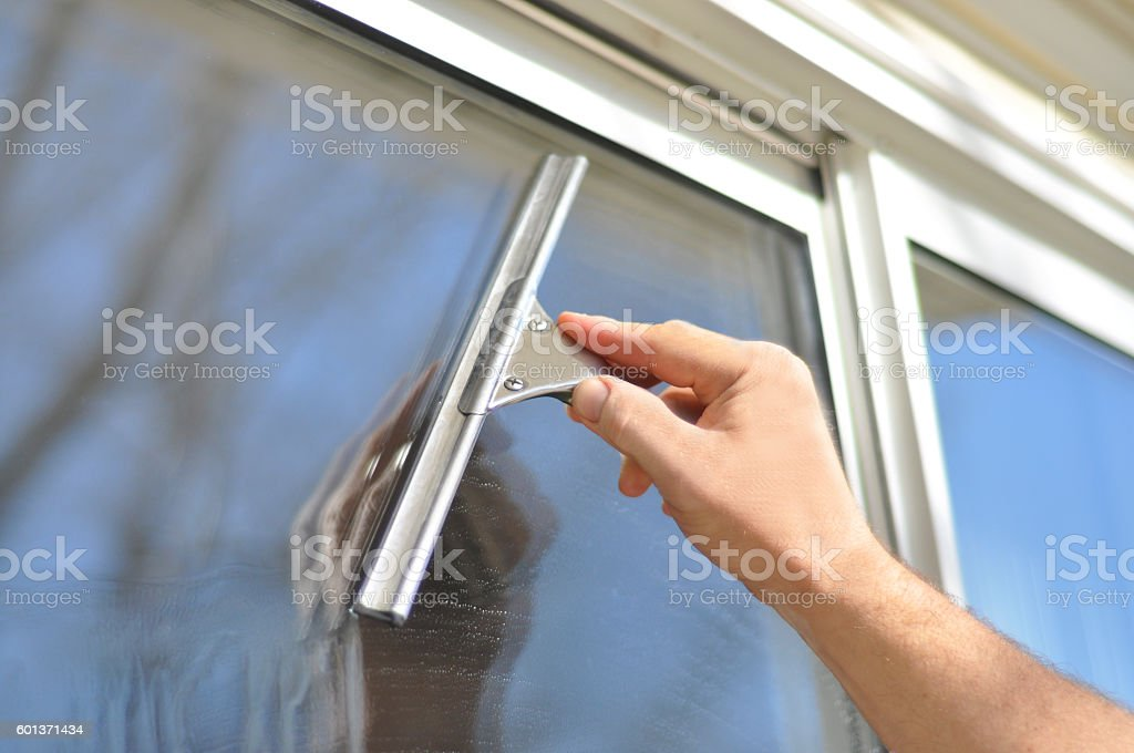 Little Squeegee stock photo
