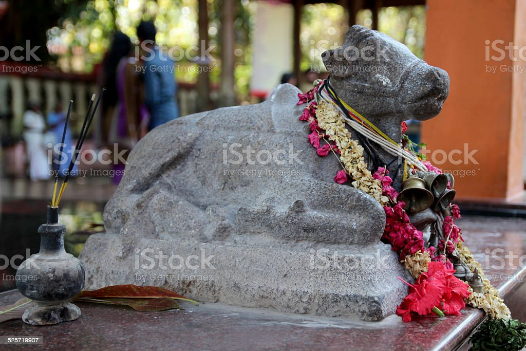 Little stone statue of Indian holy cow in hindu temple royalty-free stock photo