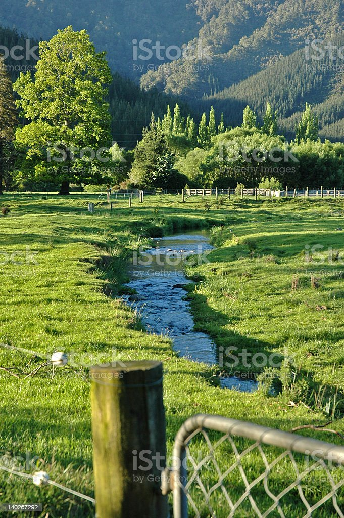 Little stream near Pelorus Bridge. royalty-free stock photo