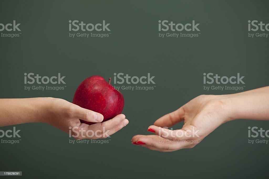 Little student hand giving red apple to teacher before blackboard stock photo