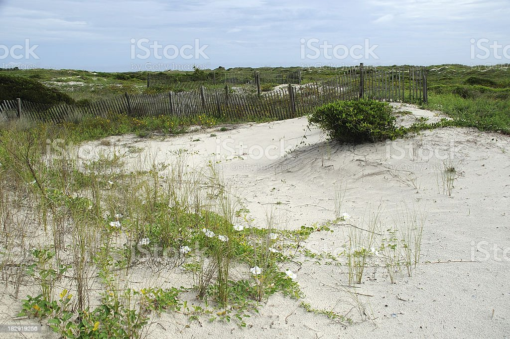 Little Talbot Island stock photo