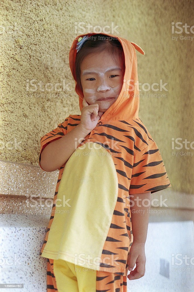 Little tiger royalty-free stock photo