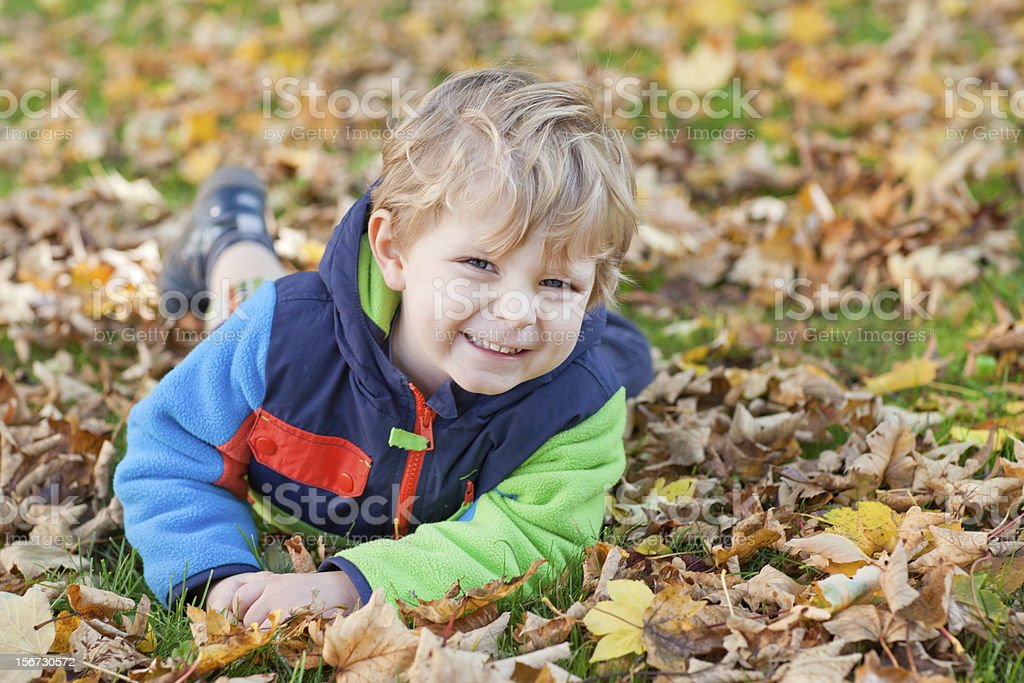 Little toddler boy in autumn park royalty-free stock photo