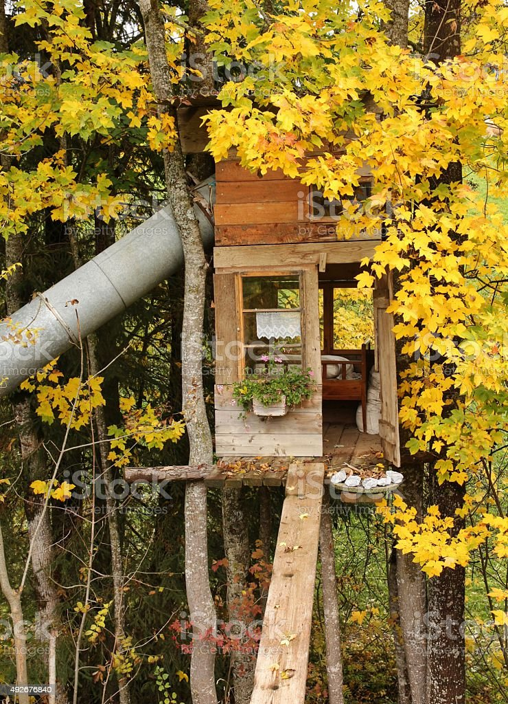 Little tree house with bed and slide stock photo