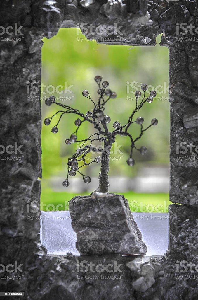 Little Tree III royalty-free stock photo