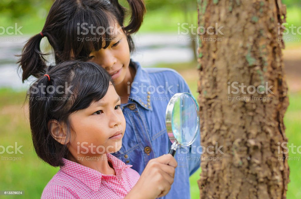 Little two girl examining the tree stock photo