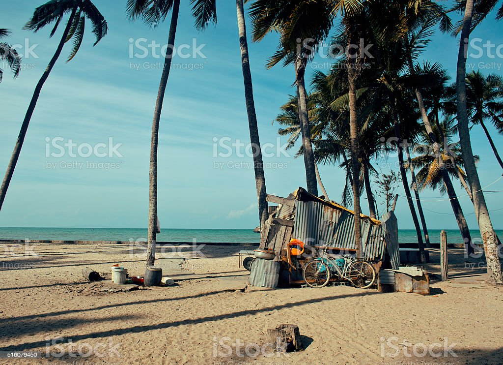 little vietnamese house on seacoast among palms and sand stock photo