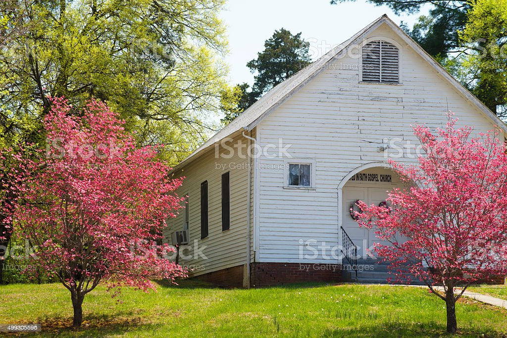 Little white country church and pink Dogwood Trees. stock photo