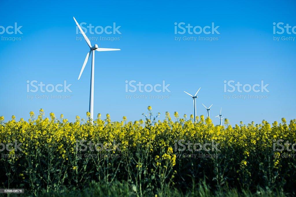 Little wind turbine stock photo