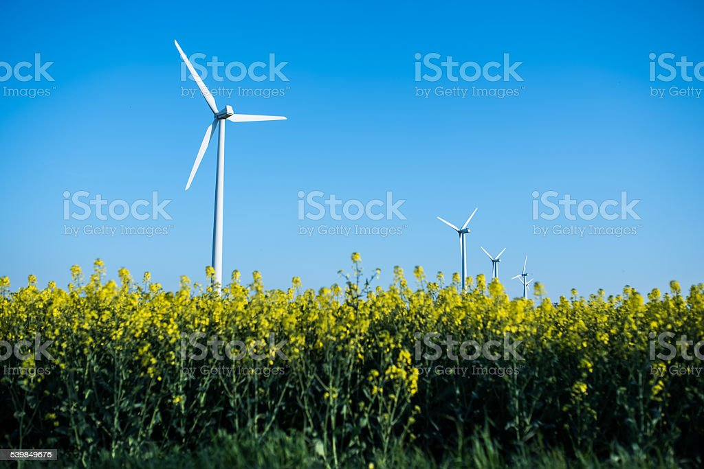 Little wind turbine stock photo