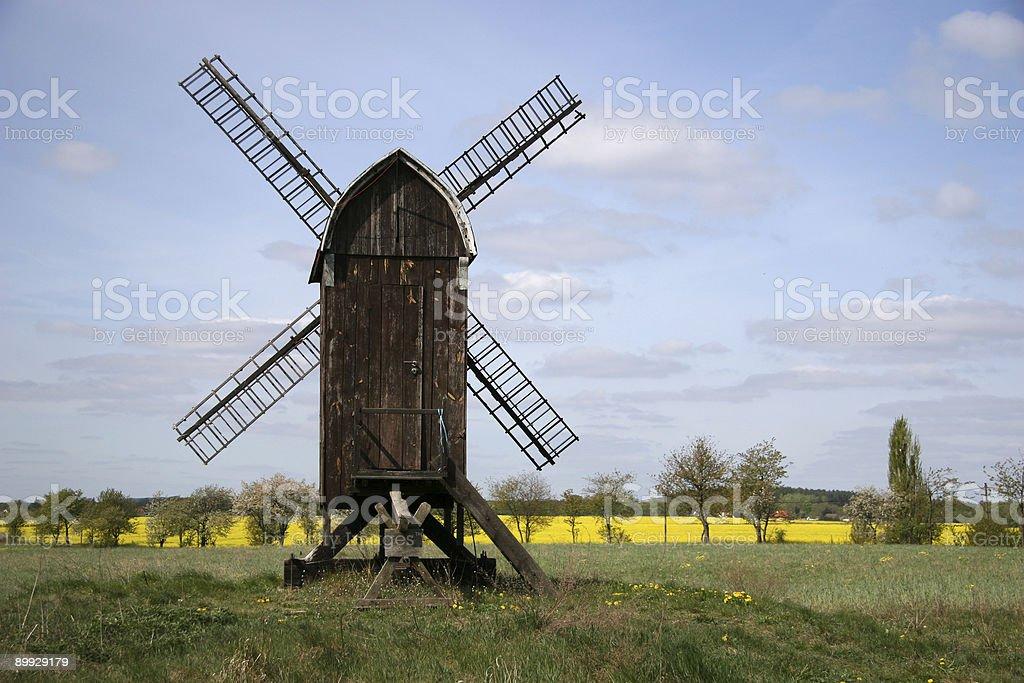 Little windmill in springtime stock photo