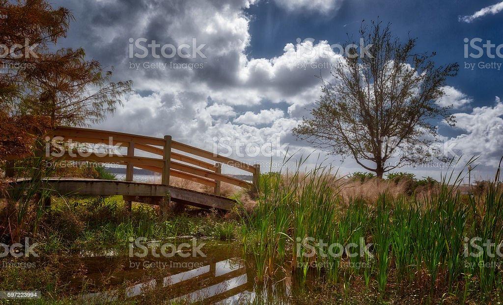 Little wood bridge stock photo
