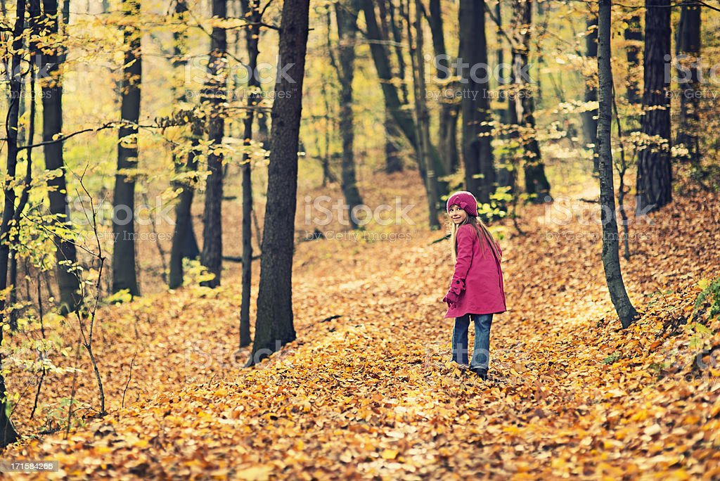 Littlt girl walking in autumn forest royalty-free stock photo