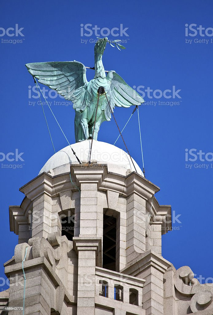 Liver Bird Perched on the Royal Liver Building stock photo
