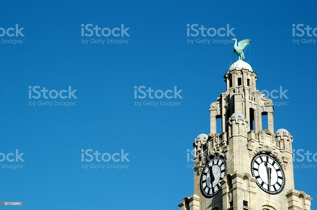 Liver building with copy space stock photo