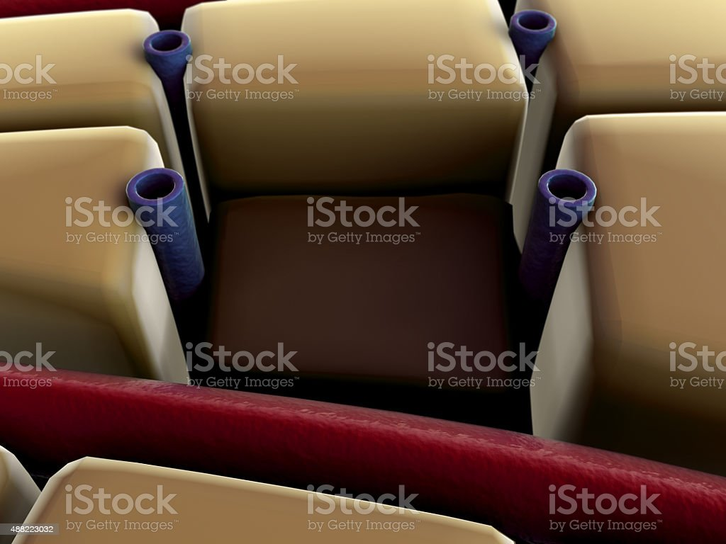 liver disease stock photo