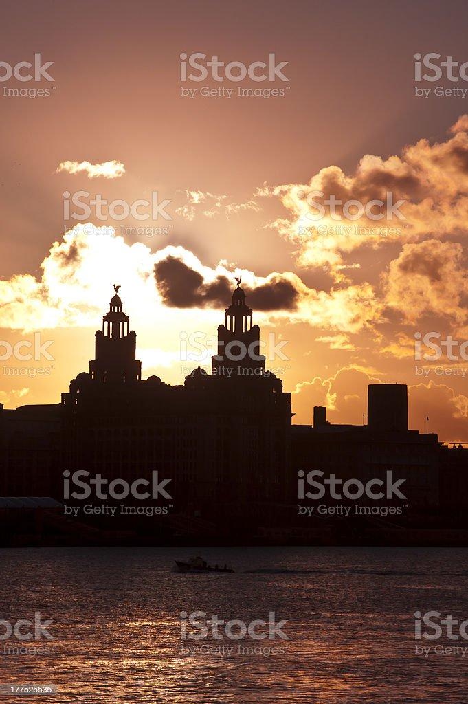 Liver sunrise stock photo