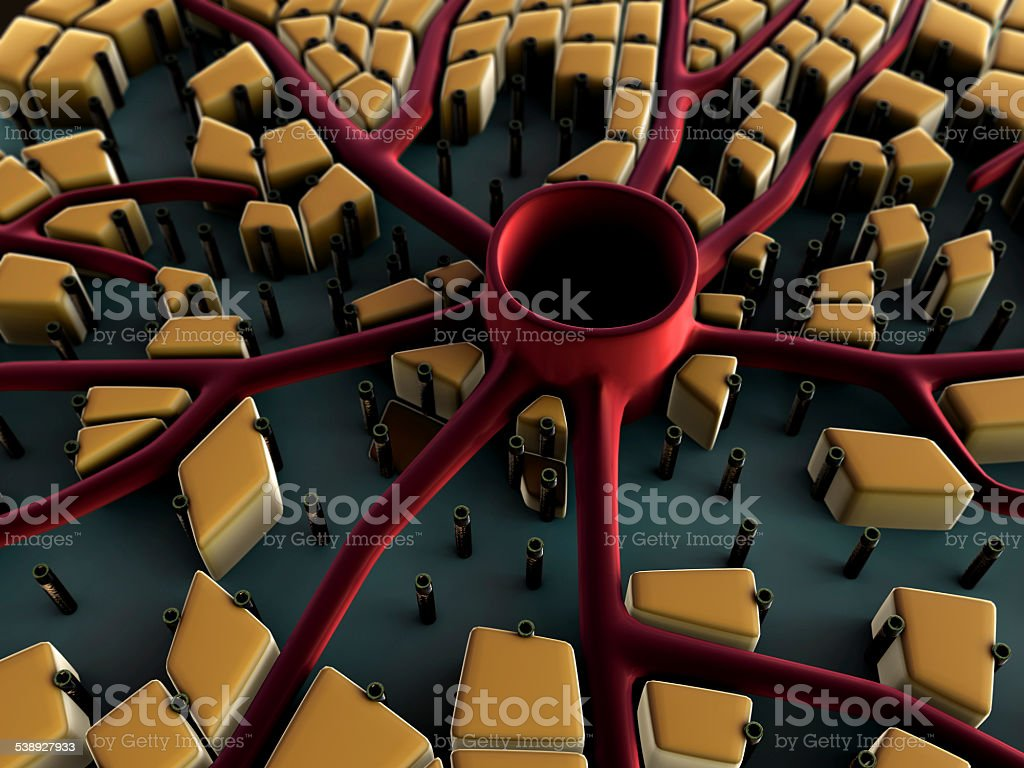 liver, vein stock photo