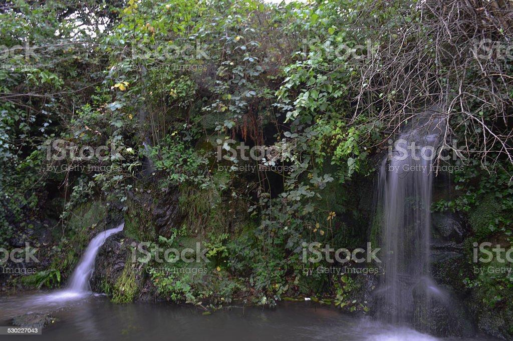 Liverpool, Sefton Park, Fairy Glen, falls stock photo