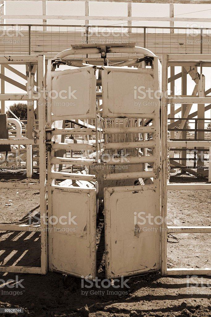 Livestock shute stock photo