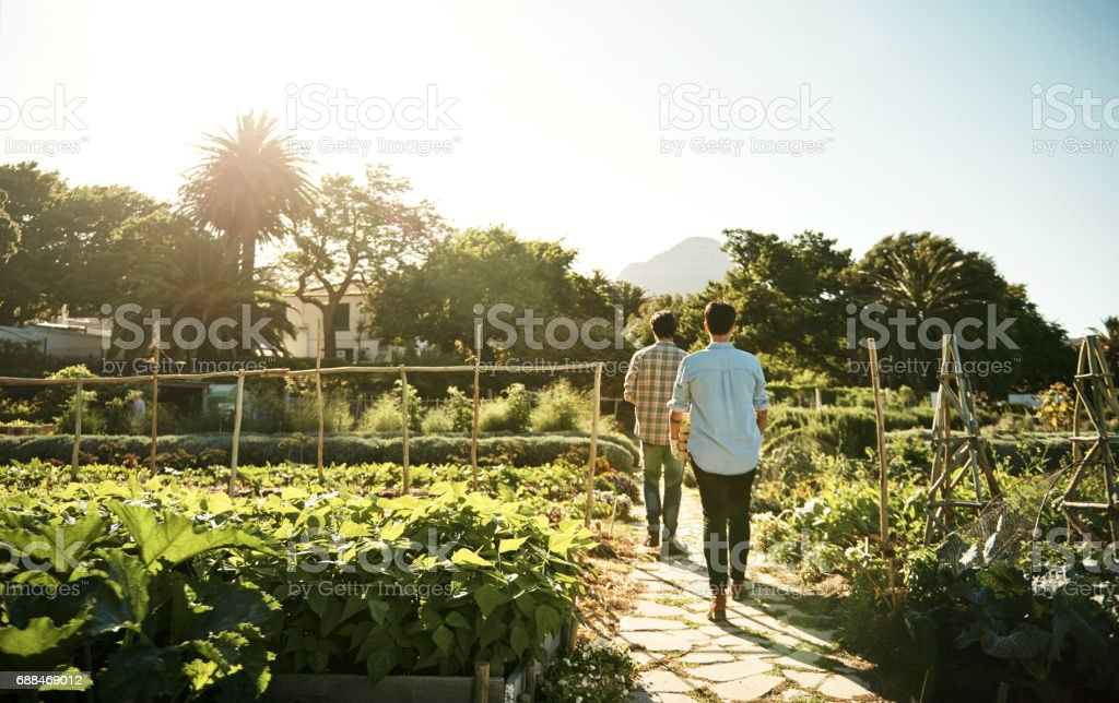 Living and working in harmony with nature stock photo