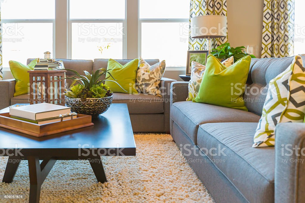 Living Area with Coffee Table and Couch stock photo