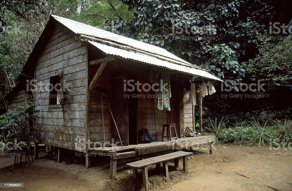 Living house in Madagascar jungle royalty-free stock photo