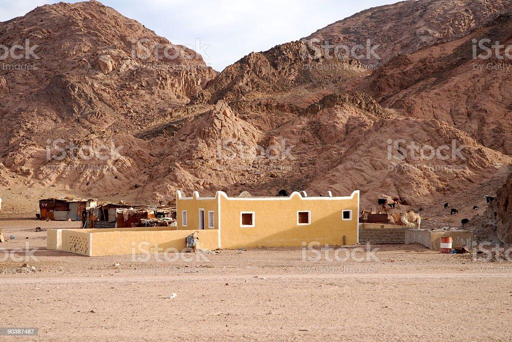 Living in the desert royalty-free stock photo