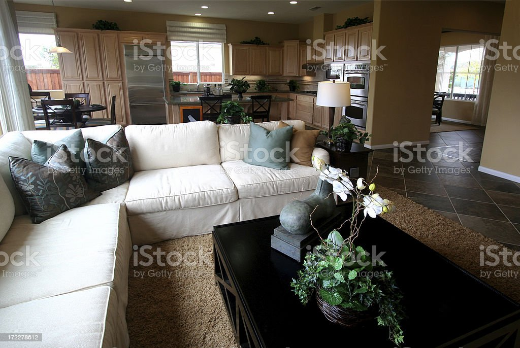 Living Room and Kitchen royalty-free stock photo