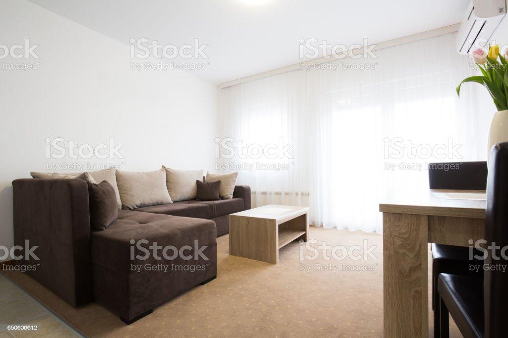 Living room apartment interior design stock photo