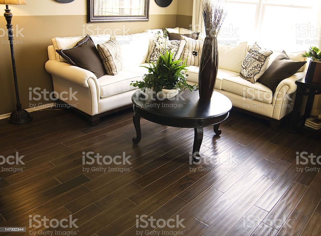 Living room with hardwood flooring and sofa stock photo