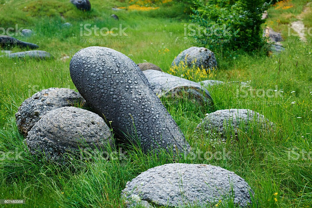 living stones in nature stock photo