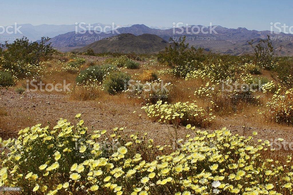 Living Valley stock photo