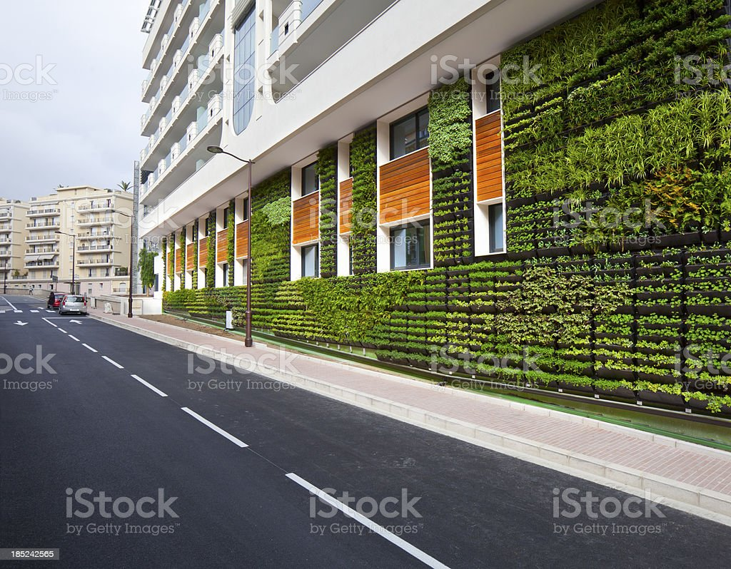 Living Wall Hydroponic Architecture stock photo