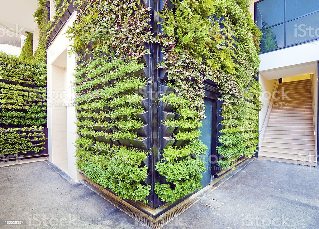 Living Wall Office Facade Corner stock photo