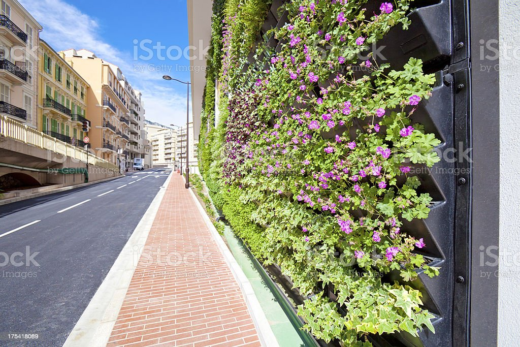 Living Wall Office Facade on City Street royalty-free stock photo