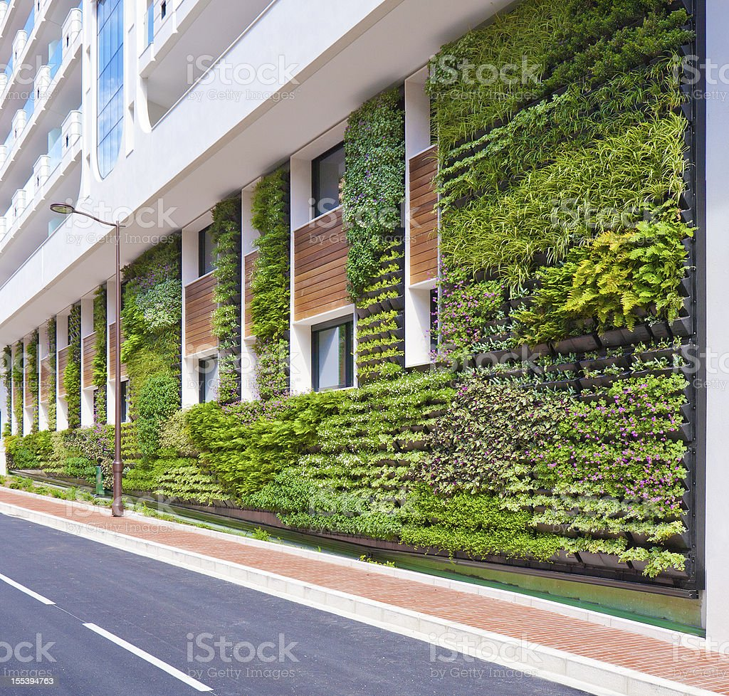 Living Wall office vertical garden Architecture stock photo
