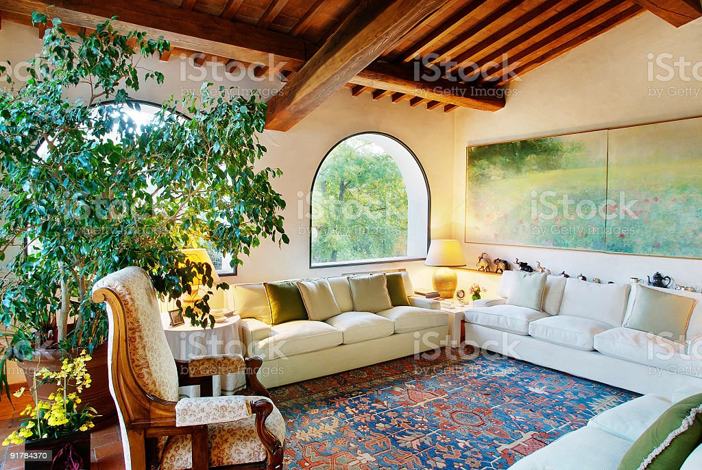 Living-room with sofa, carpet, plant and raftered ceiling royalty-free stock photo