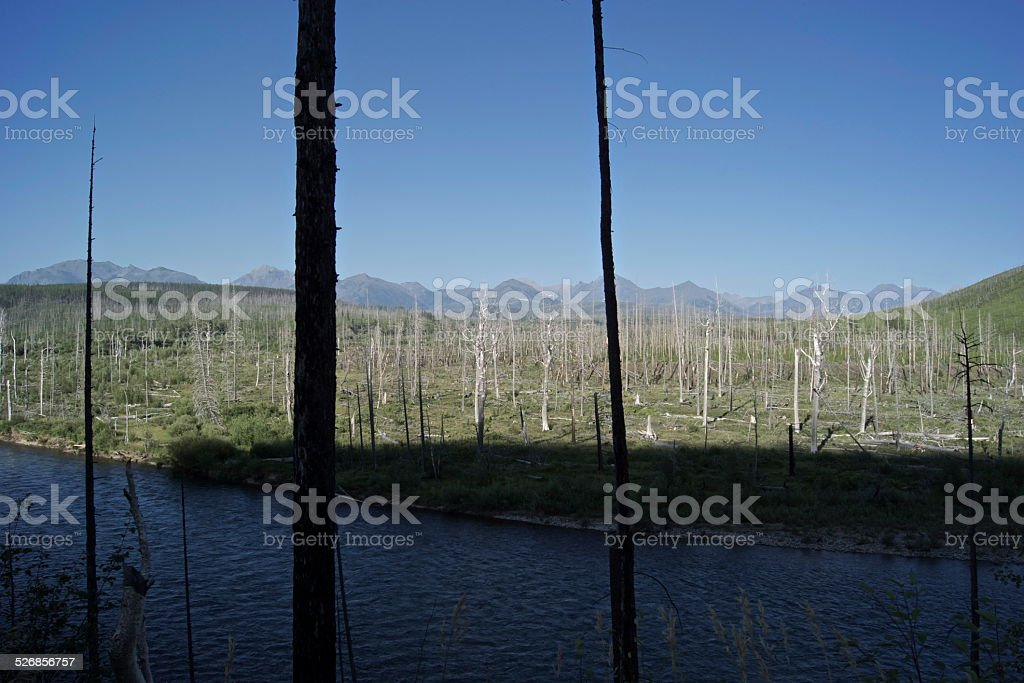 Livingston Range Rare Angle stock photo