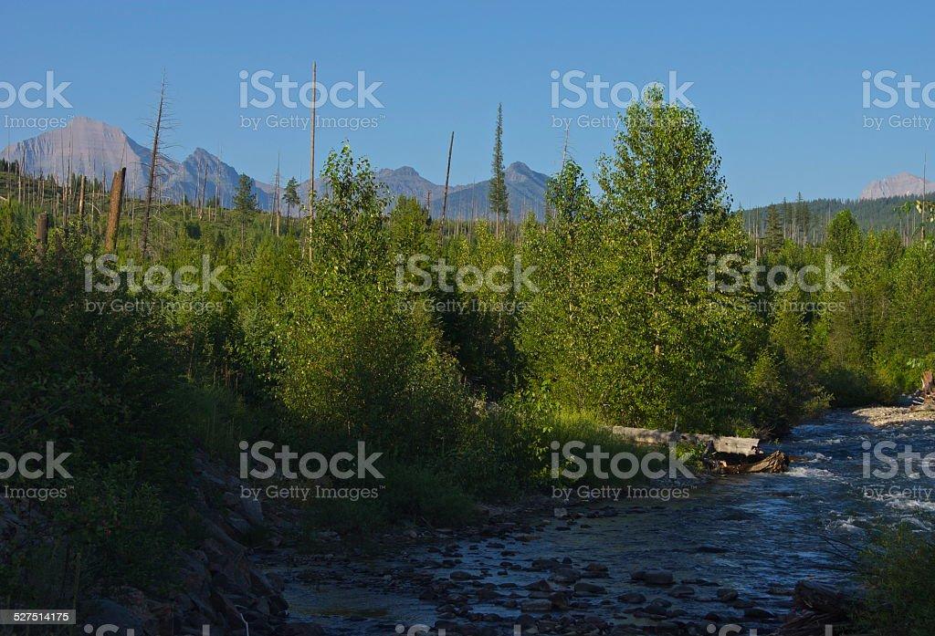 Livingston Range Wild Creek stock photo