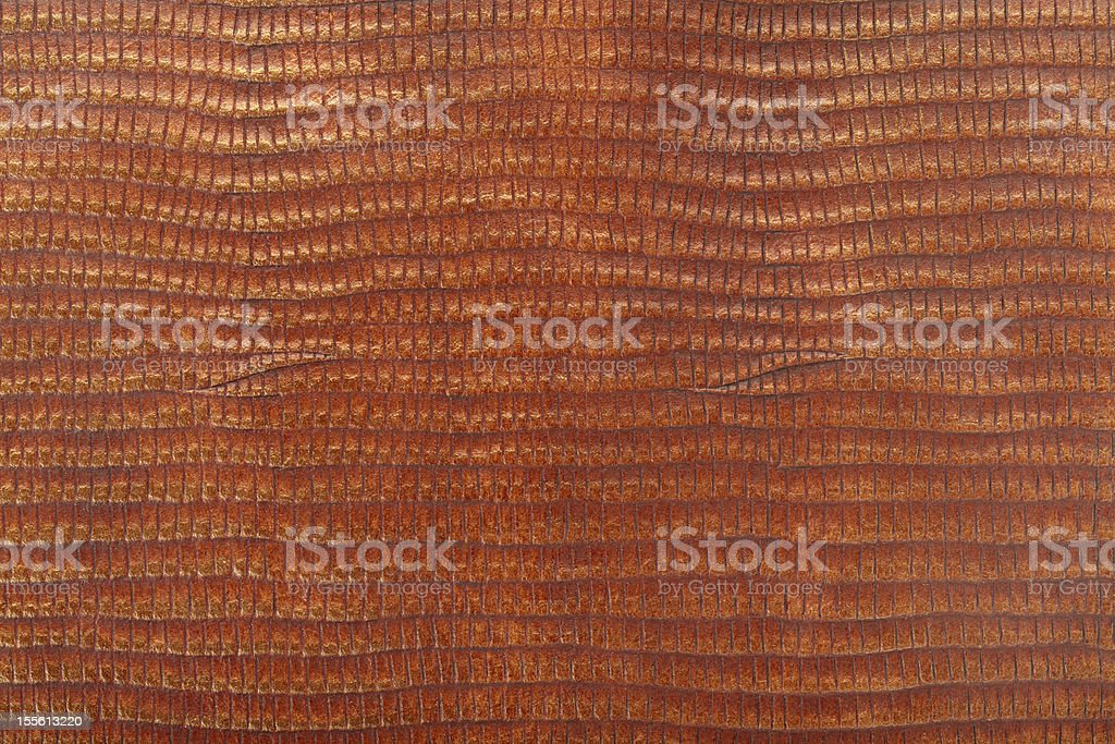 Lizard leather texture royalty-free stock photo