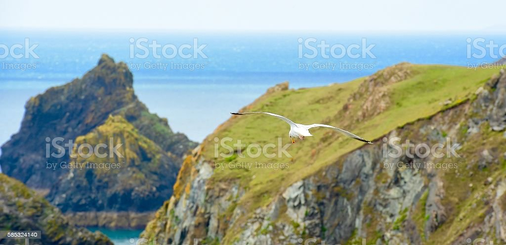Lizard Peninsula stock photo