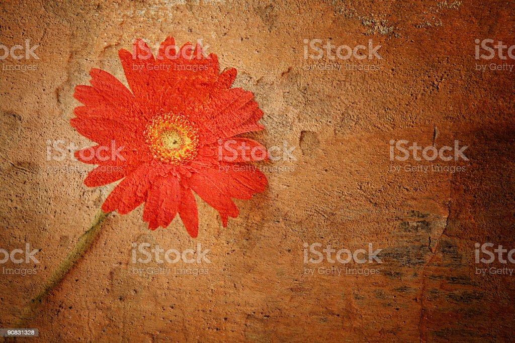 Ljubljana Flower royalty-free stock photo