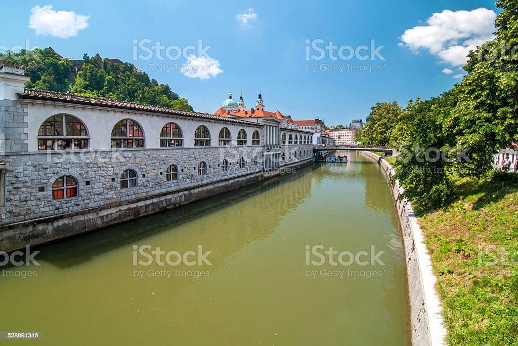 Ljubljanica river and covered market, Ljubljana, Slovenia stock photo