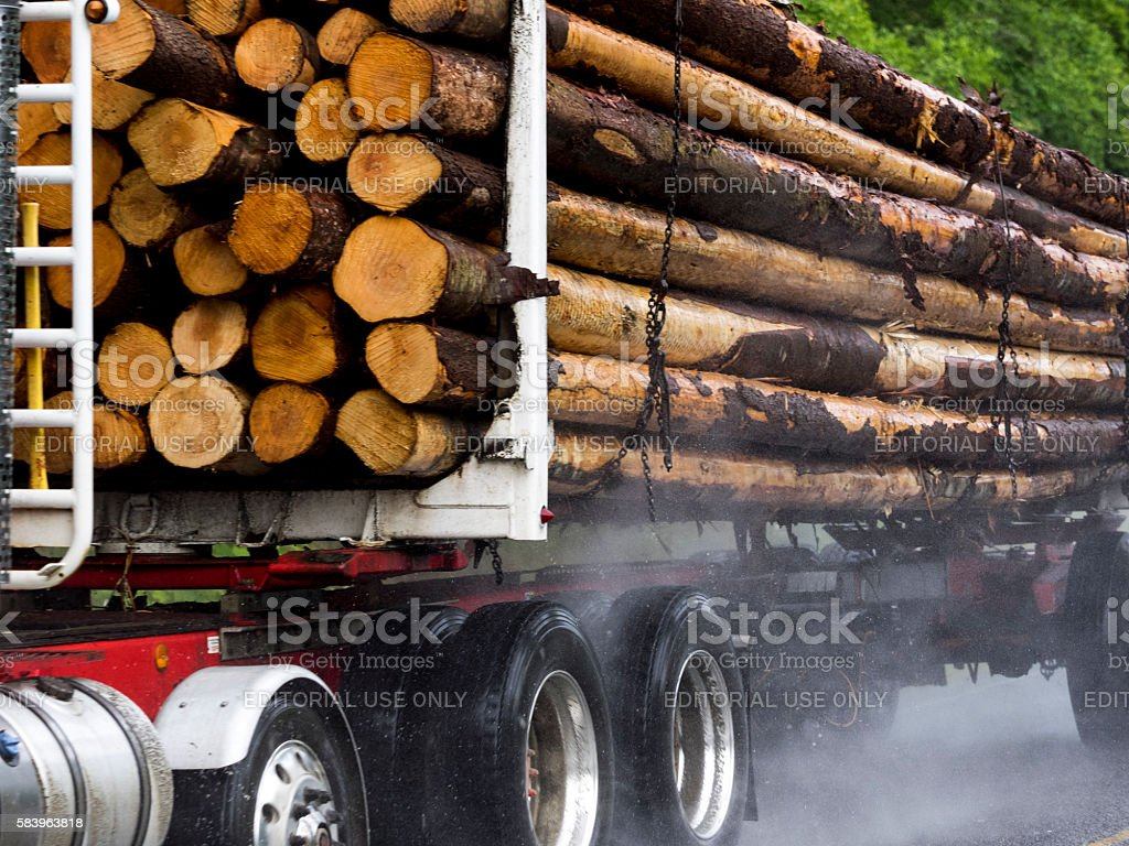 Loaded Log Truck Rural Road Port Angeles Washington State Close-up stock photo