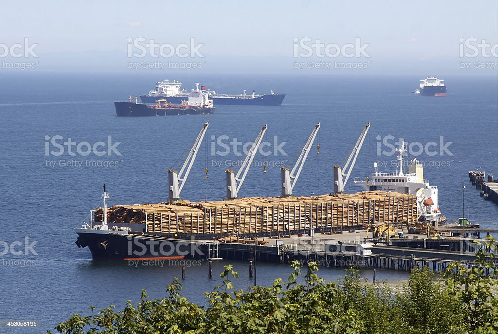 Loaded Ship With Logs For Export stock photo