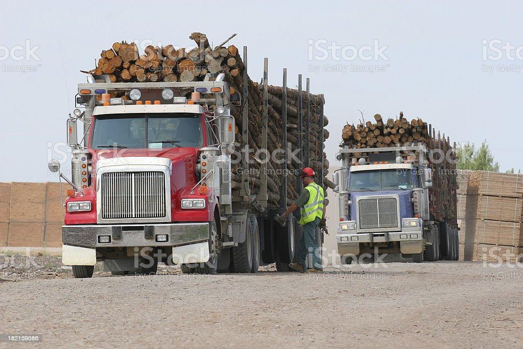 Loaded Trucks royalty-free stock photo